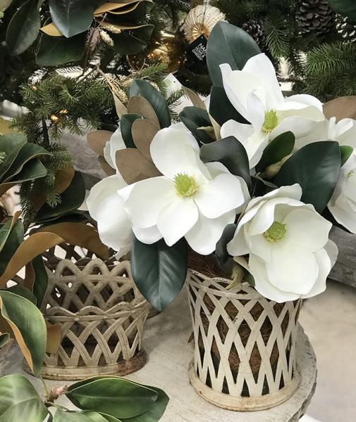 6-HOME-magnolia-set