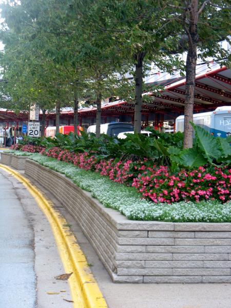 O'Hare Photos 2012-08 006
